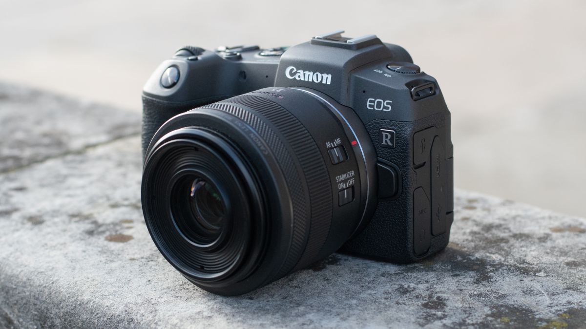 Nikon Z6, Fujifilm X-T3, Canon EOS RP e outros venceram o gongo em ...